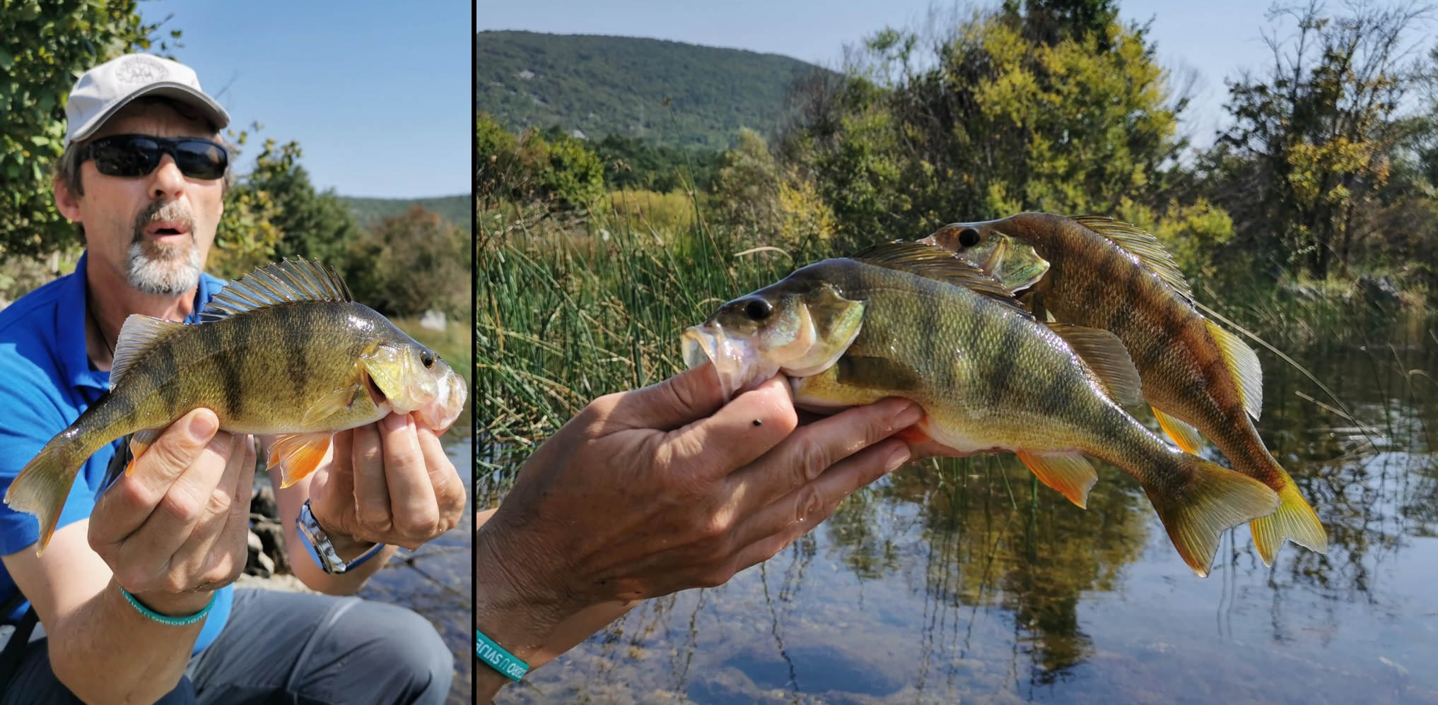 stikada ribolov spineri