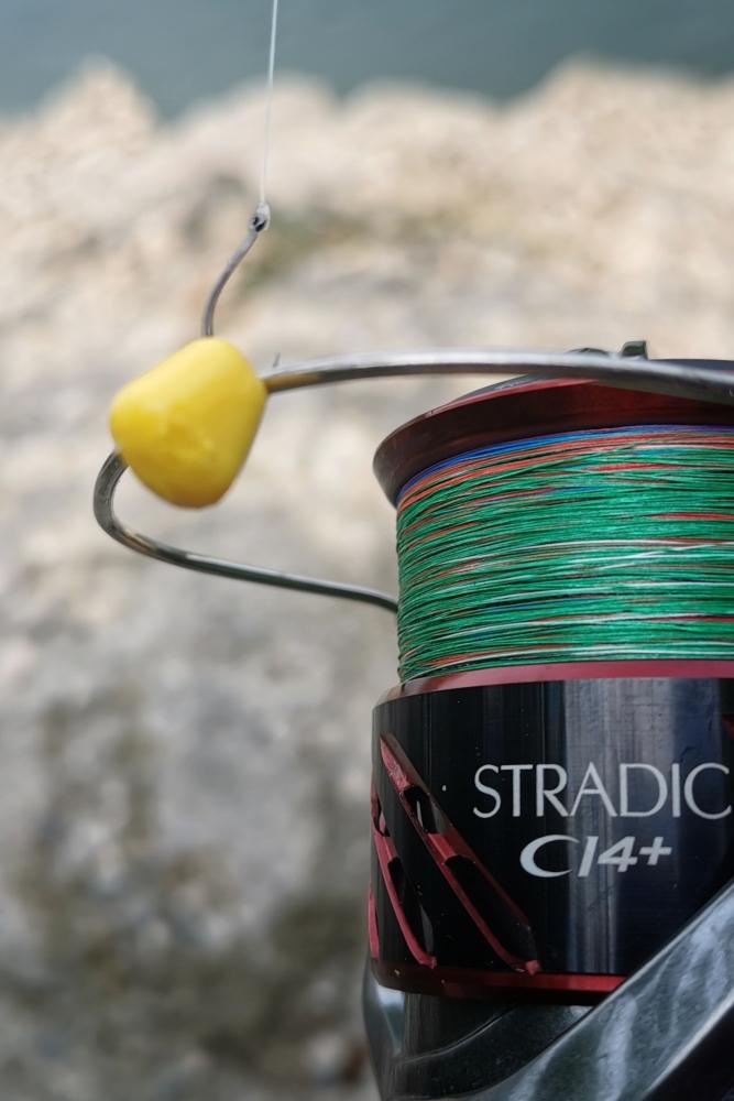 plotica ribolov 1