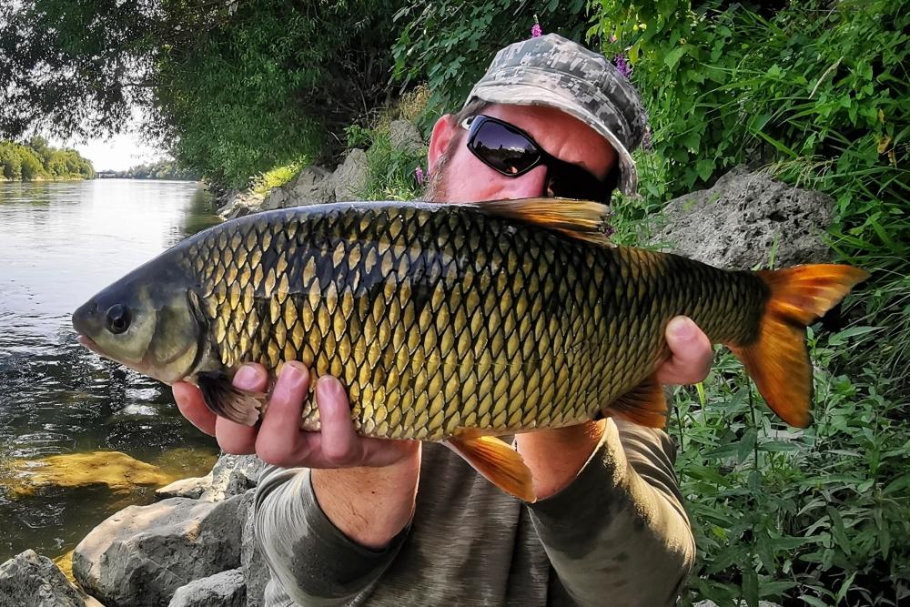 plotica ribolov 4