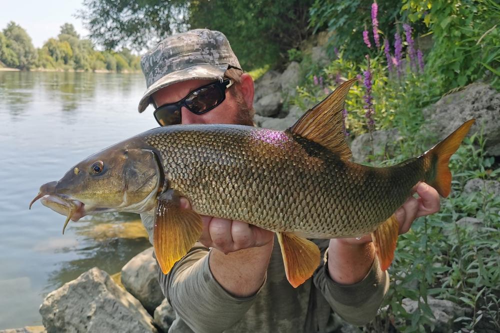 plotica ribolov 6